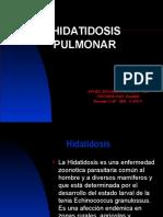 Hidatidosis 2016