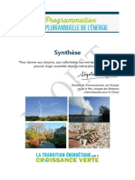 Synthese ppe.pdf