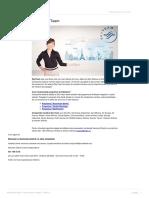alianta-skyteam.pdf
