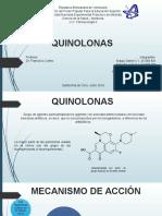 Quinolonas Completo