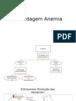 Abordagem Anemia