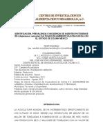 CENTRO DE ALIMENTACION Y DESARROLLO