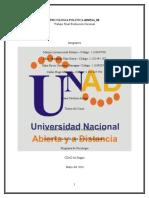 Trabajo Final de Evaluacion Nacional, Psicología Política