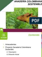 Carlos.Osorio.pdf