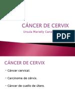 CÁNCER DE CERVIX expo.ppt