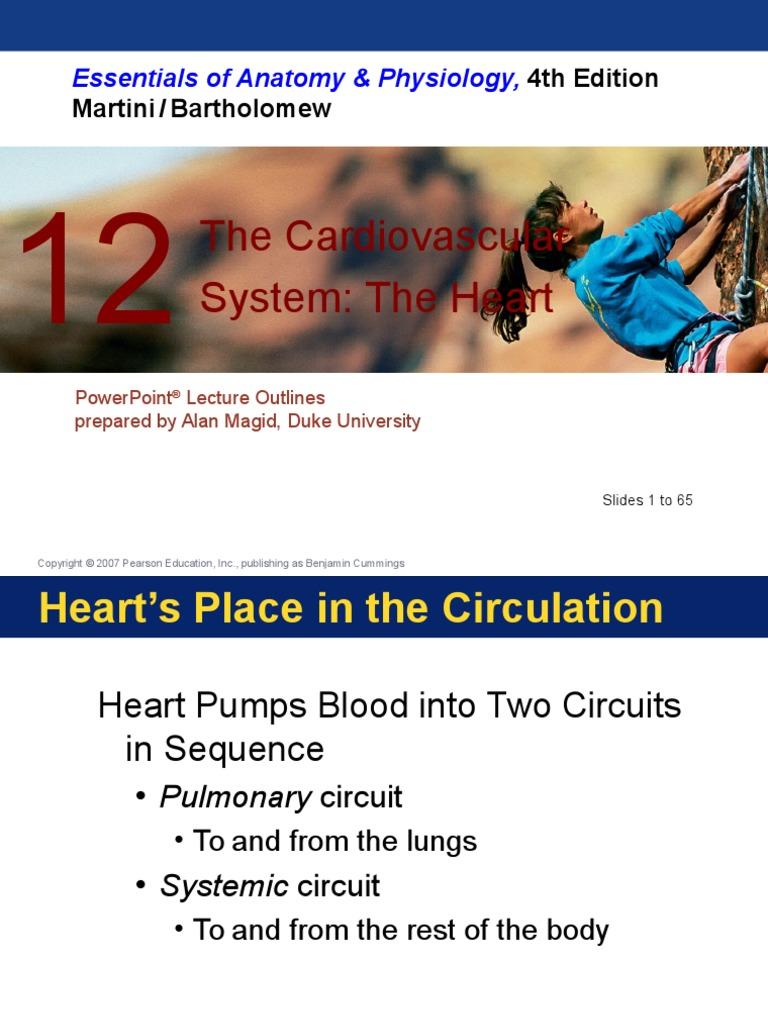 12_Heart_PPT_A | Heart Valve | Heart