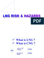 LNG Risk and Hazards-Okay