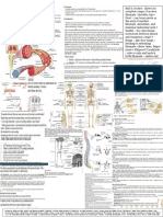 Anatomy and Physiology 2016