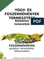 GYÓGY- ÉS FŰSZERNÖVÉNYEK összefoglaló 2016.pptx