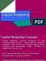 19865 Capital Buget