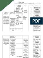 Plan de Accion o de Trabajo Julio 2015