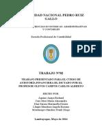 2. Avance Desarrollo Programa de Audit. Efectivo
