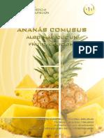 Bromelina (Ananas)