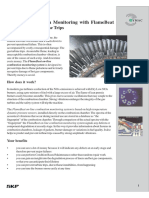 Flamebeat CDMS.pdf