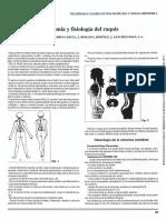 fisiología columna.pdf