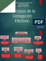 Principios de La Delegación Efectiva