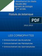 bryophytes 2013