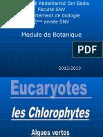 Chlorophytes Chloro Ph Ytes
