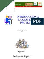 Introduccion Gestion de Proyectos.pdf
