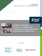 2013-cha-prevalencia-geohelmintiasis.pdf