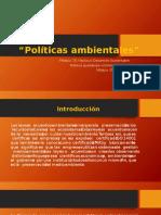 Contrerasguevara Rebecaguadalupe M15S3 Políticasambientales
