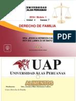 7AYUDA FAMILIA ALIMENTOS.pdf
