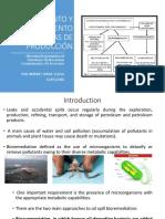 Presentación Biorremediacion y Fitorremediacion