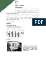Identificación del tema y el problema.docx