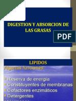 1.1.Metabolismo de Los Lípidos