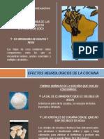 Efectos Neurologicos de Cocaina Neuro