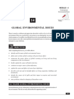 14_Global Environmental IssuAes