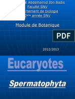 Spermaphytes2 Spermaphytes2