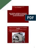 Curs-Analiza-de-sit-V-A-x-2.pdf