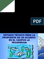 ESTUDIO TECNICO ACUARIO