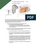 alumnos11.pdf