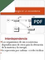 Flujo-la-energia-en-un-ecosistema.pdf