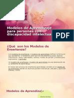 Modelos de Aprendizaje Para Personas Con Discapacidad Intelectual