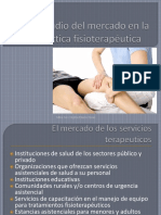 Tema 6. El Estudio Del Mercado de La Práctica Fisioterapéutica