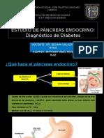 Estudio de Páncreas Endocrino