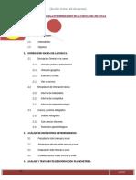 206961015 Informe de La Cuenca Del Rio Cunas