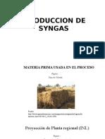 Produccion de Syngas
