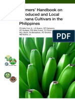 Farmer s Handbook on  Banana Cultivars in the Philippines 1376