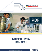 Mineralogista Oro 1