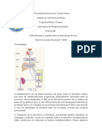 Bioca Practica 5