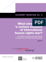 Briefing 6 What is a serious violation of human rights law_Academy Briefing No 6.pdf