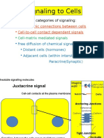 cell cell 2016 -2.pptx