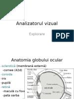 Vizual Si Auditiv2