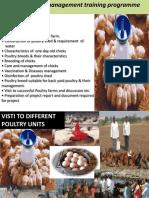 Poultry KVK Training