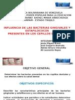 Presentacion Cepillos Dentales.pptx