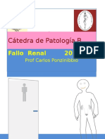Fallo Renal 2016